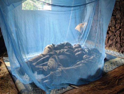 Malaria_net